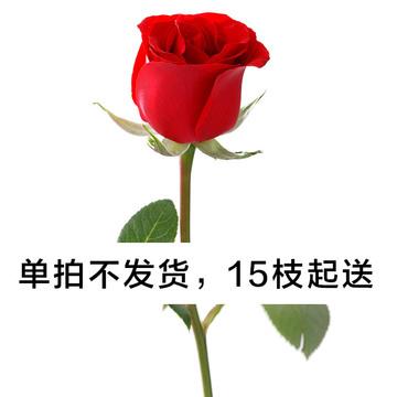 单支红玫瑰