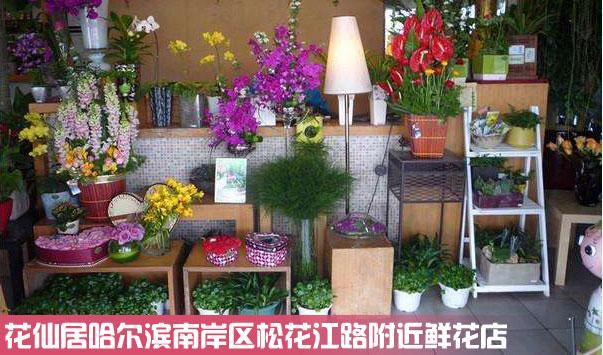 南岗区松花江路附近鲜花店