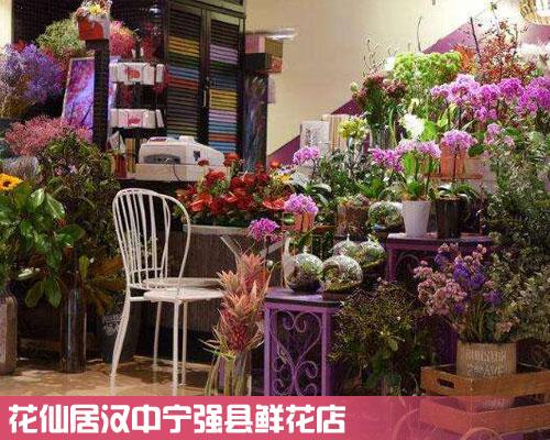 宁强县鲜花店
