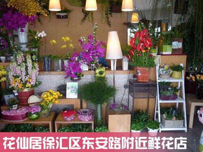 徐汇区东安路鲜花店