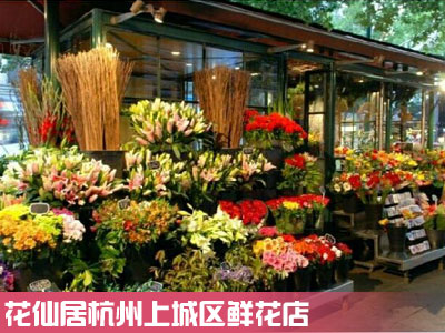 上城区鲜花店