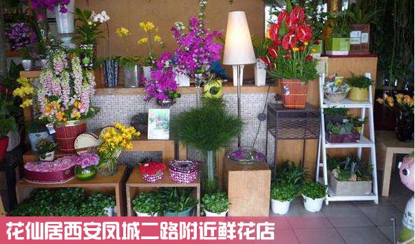 西安凤城二路连锁鲜花店