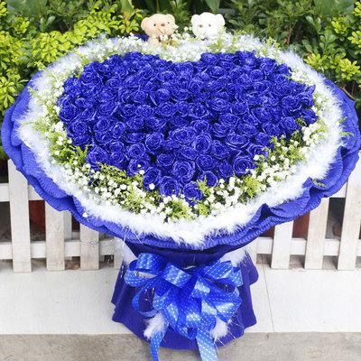 蓝色爱情海